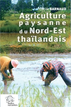 agriculture_thailande